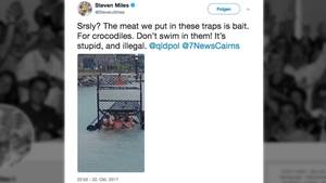 Männer in Australien klettern in Krokodilfalle mit ausgelegten Ködern