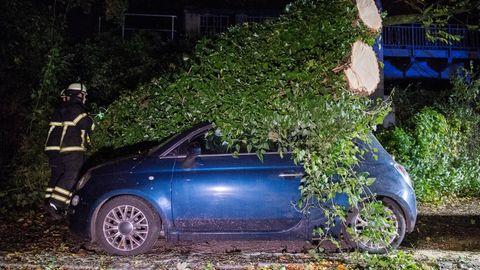 In Hamburg-Winterhude ist ein Baum auf ein Auto gestürzt. Feuerwehrleute räumen ihn beiseite.