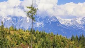 Bei einer Wanderung im Tennengebirge ist ein 14-Jähriger ums Leben gekommen
