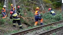 """Einsatzkräfte der Feuerwehr räumen nach Sturm """"Herwart"""" Äste von einer Bahnstrecke"""
