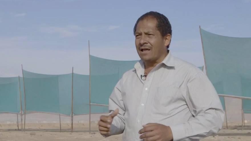Nebel auffangen: Wasser in der Wüste? Dieser Peruaner will es möglich machen