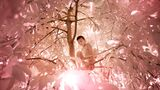Ein Junge klettert auf einen Baum um Früchte zu pflücken. Er schließt die Augen, weil er vom Sonnenlicht geblendet wird.  Die seltene Erbkrankheit breitete sich nach einem verheerenden Taifun auf dem kleinen Atoll aus. Der König des Inselstaates war Träger des Gens und zählte zu einem der wenigen Überlebenden der Naturkatastrophe.
