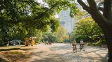 """Central Park – Broadway   Central Park. Radfahrerparadies. Der Lärm verschwindet. Die Wolkenkratzer sind nur noch entfernte Silhouetten zwischen dem Grün der Ahornbäume. Jogger schwitzen, Väter werfen Söhnen einen Football zu. Dann eine berittene Polizeistreife. Der Gaul wiehert, die Polizistin schaut mich an. Ihr Blick, exakt wie der meiner Mathematiklehrerin: In Mathe war ich eine Niete. Die Radwege des Central Parks sind fast alle Einbahnstraßen, ich bin ein Geisterradler, erklärt die Ordnungsfrau. Ich entschuldige mich mit hochrotem Kopf und fahre weiter – nun in der richtigen Richtung. Meine Irr- und Umwege zeichne ich auf einem Stadtplan ein, der bald wie ein Gemälde von Jackson Pollock aussieht. Am """"Lake"""" füttern Rentnerinnen Enten, an der John-Lennon-Gedenkstätte """"Strawberry Fields"""" vor dem düsteren Dakota Building stimmt ein Gitarrist sein Instrument. Wie oft er am Tag """"Imagine"""" singe, frage ich. Er lacht auf. Am Columbus Circle lasse ich die grüne Lunge New Yorks hinter mir."""