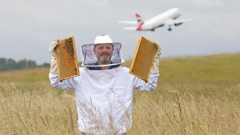 Ingo Fehr ist Hobby-Imker am Hamburger Flughafen