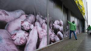Sau Greenpeace Protest CDU-Zentrale