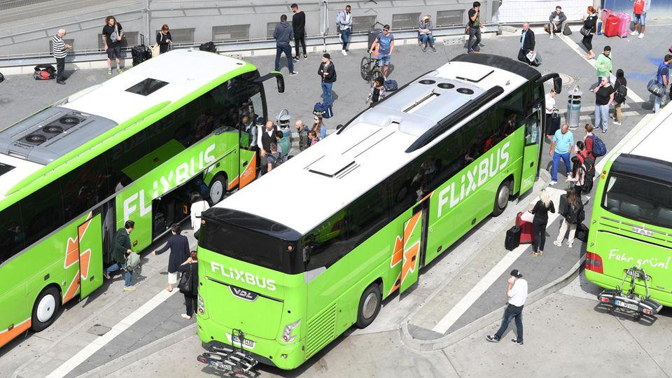 Flixbusse in Frankfurt am Main