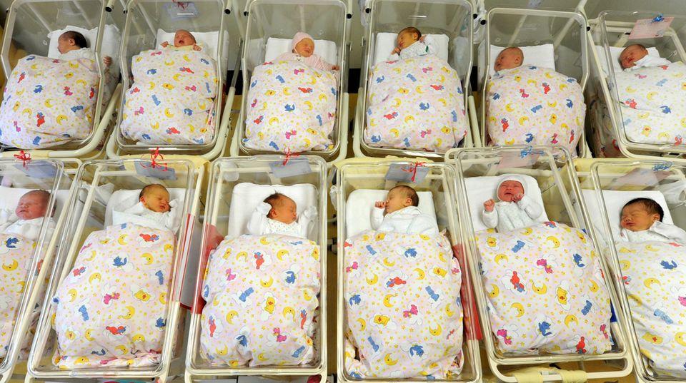 Babys auf einer Neugeborenenstation - Drittes Geschlecht muss künftig im Geburtenregister stehen