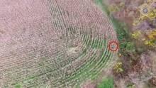 USA: Polizei spürt vermisste Frau mit Drohne schnell auf