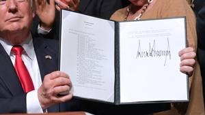 Donald Trump ein Jahr nach der Wahl
