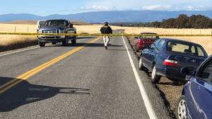 Abgesperrte Straße in Nordkalifornien: Fünf Tote bei Schießerei nahe Grundschule