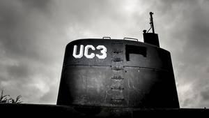Die schwedische Journalistin Kim Wall wurde wahrscheinlich im Sommer an Bord eines U-Bootes getötet