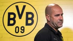 Peter Bosz mit dem BVB-Emblem im Rücken