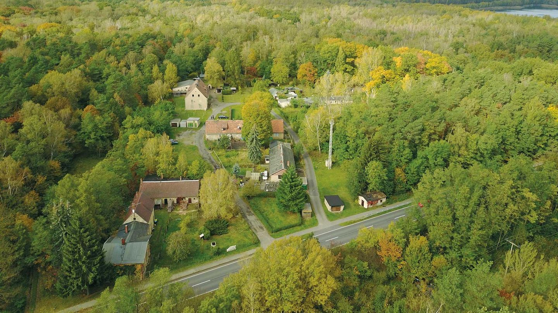 Die Siedlung Alwine in Brandenburg liegt mitten in einem Waldstück