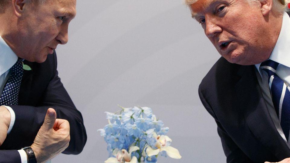 Im vertraulichen Gespräch: Wladimir Putin und Donald Trump