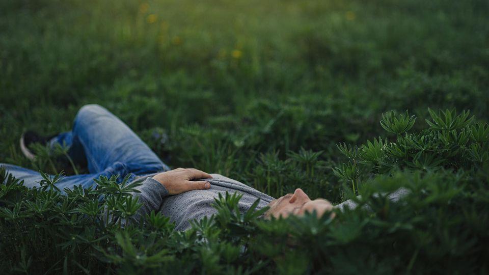 Ein Mann liegt auf einer grünen Wiese und sieht in den Himmel