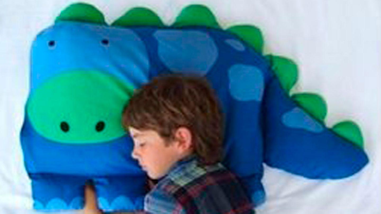 Absurde Abzock-Masche: Amazon-Fail: Da will man ein Dino-Kissen kaufen - und dann kommt das