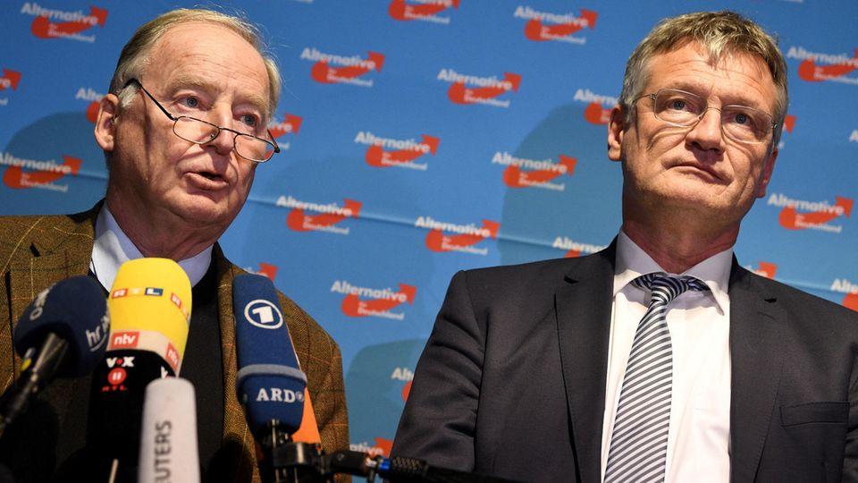 Neue Doppelspitze, neuer Rechtsruck: Meuthen und Gauland zu AfD-Vorsitzenden gewählt