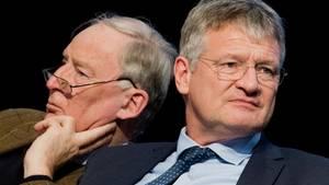 Die neuen AfD-Bundesvorsitzenden Alxeander Gauland und Jörg Meuthen beim Bundesparteitag in Hannover