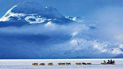 Ein Hundeschlittengespann auf seinem Weg nach Tasiilaq im Osten Grönlands