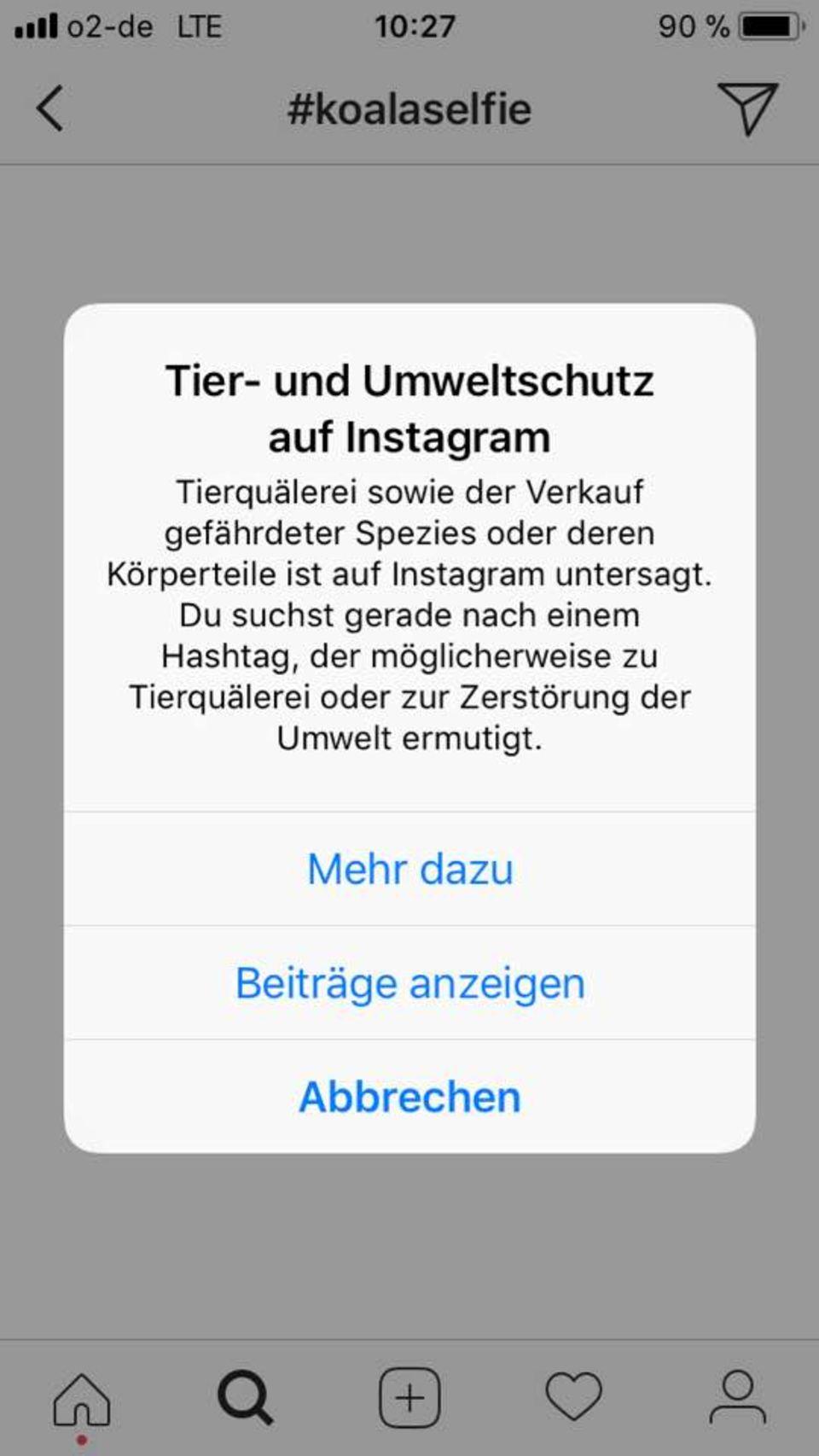 Tierquälerei: Wie Instagram mit einem neuen Warnsystem gegen Tier-Selfies vorgeht