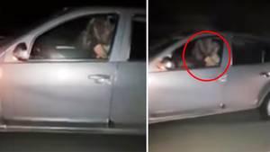 Argentinien: Pärchen treibt es bei 110 km/h auf Autobahn