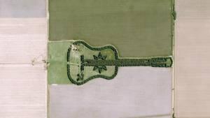 Argentinien: Die tragische Geschichte hinter dem Gitarrenwald