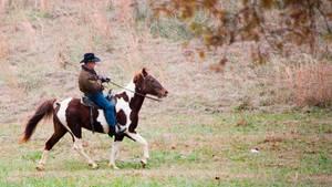 Es wirkt kurios, ist für Republikaner Roy Moore aber durchaus normal: Hoch zu Ross kam er zum Wahllokal in Alabama