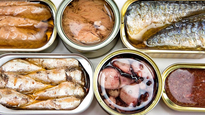 Fisch in Konserven