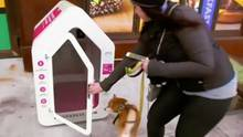 Hundeparkhaus