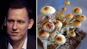 Peter Thiel und Magic Mushrooms