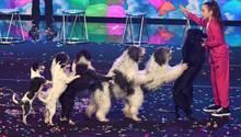 Alexa Lauenburger während ihrer Hundedressur-Show