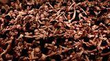 """Februar    Okayama, Japan. Gläubige Buddhisten drängen sich imSaidaiji-Tempel. Bei eisigen Temperaturen hoffen sie nackt darauf, eines der Stäbchen zu ergattern, das ein Priester beim """"Hadaka Matsuri""""-Festwirft. Wer es fängt, darf sich auf viel Glück hoffen."""
