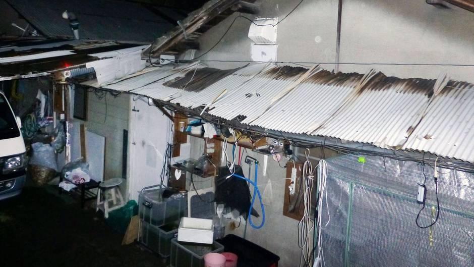 Ein heruntergekommenes Haus mit Wellblechvordach und wilden Verkabelungen steht in Japan