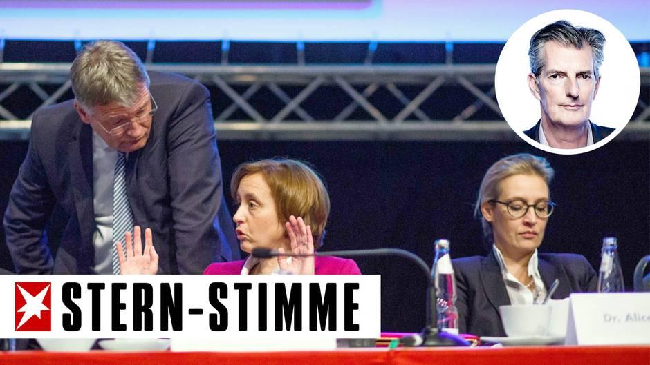 AfD-Politiker Jörg Meuthen, Beatrix von Storch (m.) und Alice Weidel
