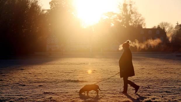 Eine Frau läuft mit ihrem Hund an der Leine über eine mit Raureif überzogene Wiese. Hinter ihr steht niedrig die Wintersonne
