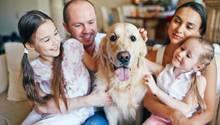 Ein Hund bereichert die Familie emotional, aber das Budget belastet er.