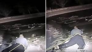 Eine Bildkombo zeigt, wie ein Polizist mit einem Seil gesichert an einen im Eis eingebrochenen Hund heranrobbt und dann zupackt