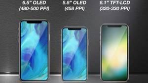 So stellen sich die Analysen von KGI die 2018er-iPhones vor.