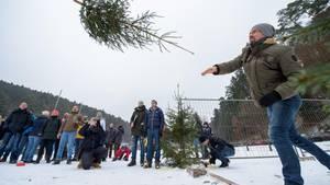 Weltmeisterschaft im Weihnachtsbaumwerfen-Dreikampf