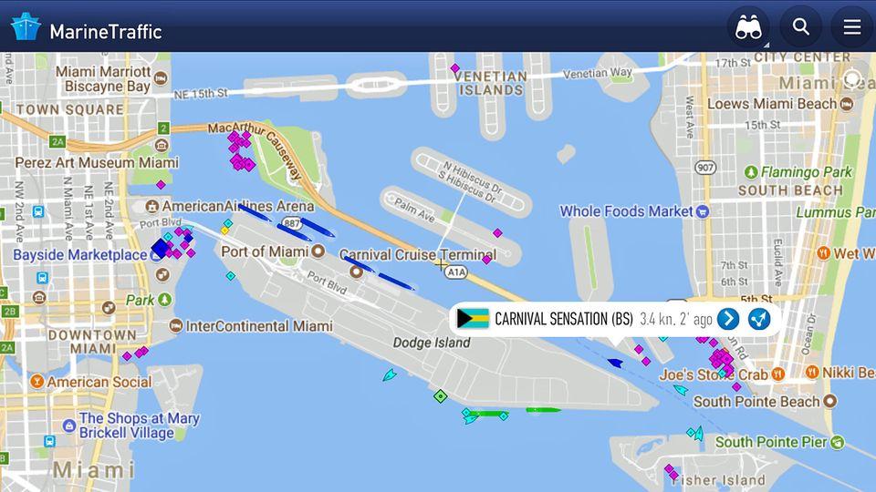 Auf der künstlichen Insel vor Miami hat ein halbes Dutzend Kreuzfahrtschiffe festgemacht