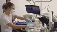 Hund beim Zahnarzt