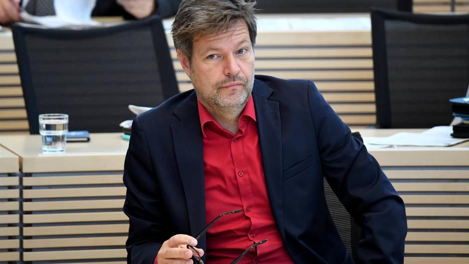 Robert Habeck im schleswig-holsteinischen Landtag