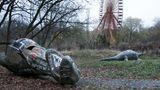 Spreepark  Dinosaurier am Boden: Dieses Szenario fand Seph Lawless in Berlin vor, als er auf dem Gelände des ehemaligen DDR-Parks im Norden des Plänterwaldes stromerte, bis ihn die Polizei herauskomplimentierte.