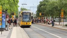 Eine Straßenbahn der Linie 7 an einer Haltestelle in Dresden