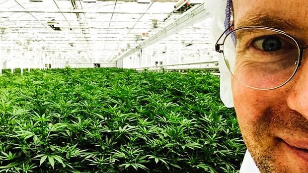 Nuuvera-Deutschland-Chef Hendrik Knopp in einer Marihuana-Anlage des Unternehmens in Kanada. Bald sollen auch die Geschäfte hierzulande blühen.