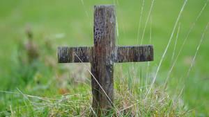 Zwangsadoption in der DDR: Nach einem anonymen Anruf will eine Mutter das Grab ihrer Tochter öffnen lassen