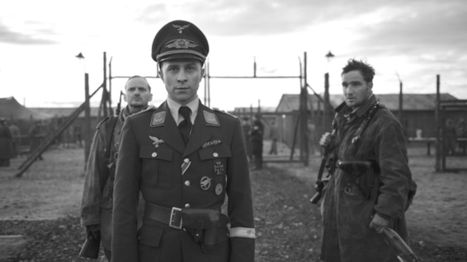 Zweiter Weltkrieg: Wojtek – der Bär, der in Monte Cassino gegen die Nazis kämpfte