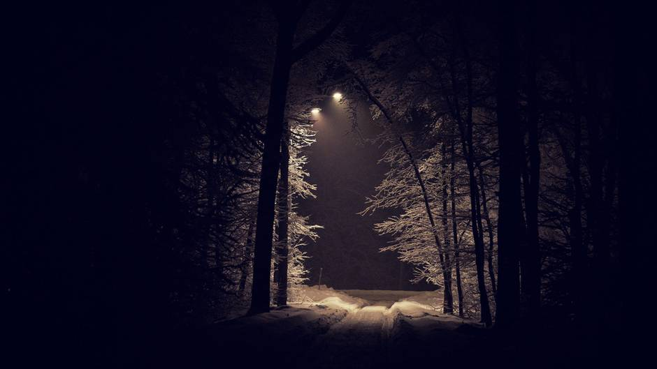 Ein Waldweg bei Nacht