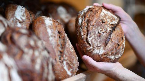 Statistik: Maurer, Bäcker, Florist: So viel verdienen Azubis