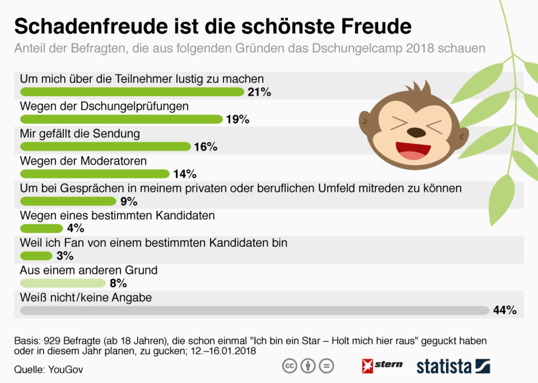 Umfrage: Deswegen gucken die Leute Dschungelcamp